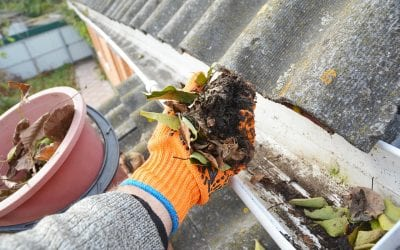 Steps to Clean the Gutters on Your Home